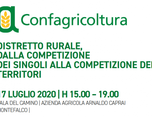 Confagricoltura: Rural district, from the competition of individuals to the competition of territories