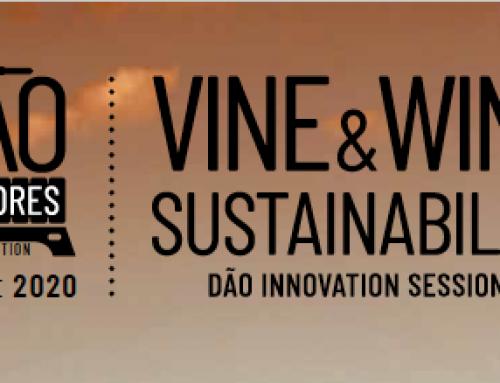 Wine&Sustainability