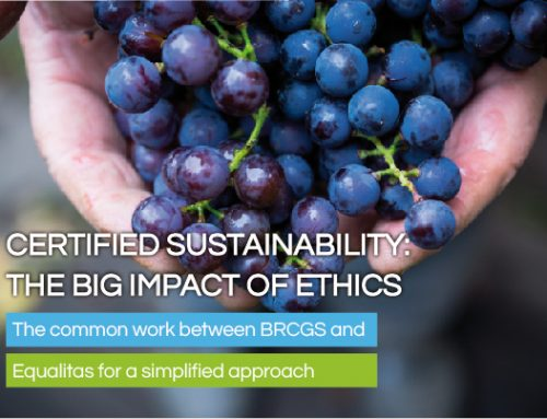 Certified Sustainability: The Big Impact of Ethics